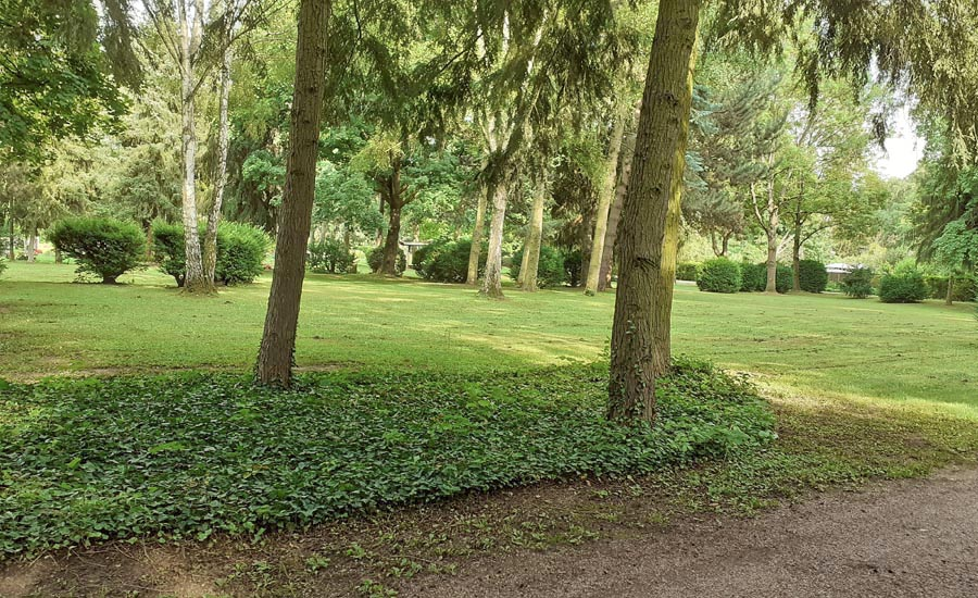 Friedhof Fechenheim